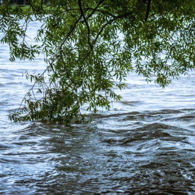 Flood, water